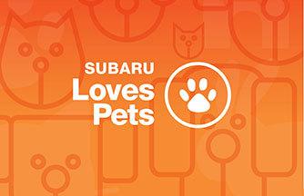 Loves Pets